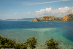 Coral Turquoise Water Island Komodo National Park Indonesia