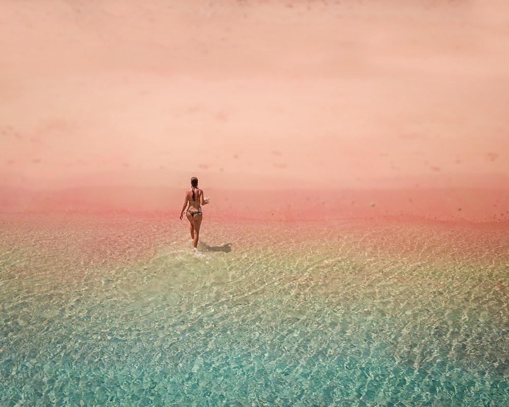 Liveaboard Komodo Pink Beach